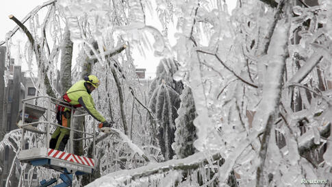 A worker cuts ice-covered branches with a chainsaw in Postojna, Slovenia. Cars stood entombed in a crystal-like casing near the deserted railway station in Postojna.