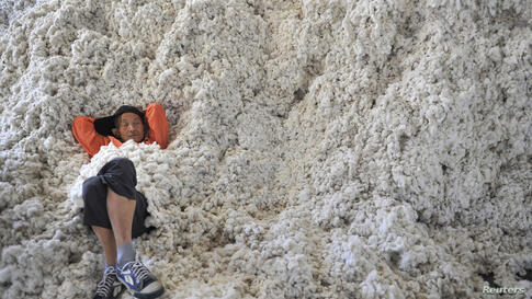A worker rests on piles of cotton at a ginning factory in Wuhu, Anhui province, China