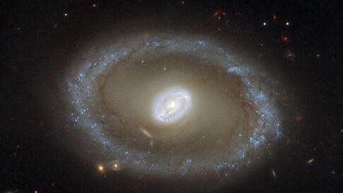 This new NASA/ESA Hubble Space Telescope image shows a galaxy known as NGC 3081, set against an assortment of glittering galaxies in the distance. Located in the constellation of Hydra (The Sea Serpent), NGC 3081 is located over 86 million light-years ...