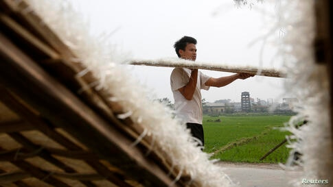 A man carries dried mien, or vermicelli made of cassava, after drying at Cat Que village outside Hanoi, Vietnam. Mien is used in several popular dishes containing chicken, beef, pork or seafood.