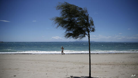 A woman jogs at the seaside of Alimos in front of a tree during a windy day, Athens, Greece.