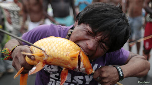 A protester bites a fish caught from the lake in front of the Justice Palace during a demonstration by indigenous Indians against proposed constitutional amendment PEC 215, which amends the rules for demarcation of indigenous lands, in Brasilia, Brazil...
