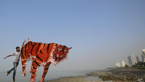 A participant runs with a large tiger-shaped kite at the International Kite Festival in Mumbai, India.