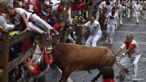 A runner is gored by a Miura fighting bull at the Estafeta corner during the eighth running of the bulls of the San Fermin festival in Pamplona, Spain.