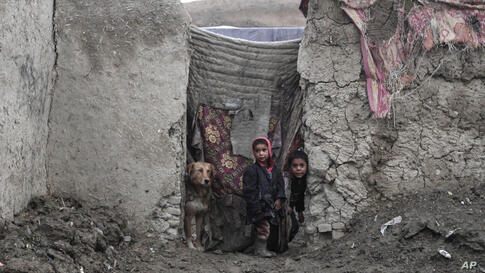 Afghan boys, displaced from their homes, peer out of their family's temporary home, on the outskirts of Kabul, Afghanistan.