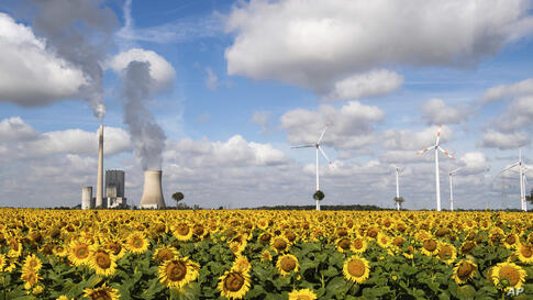 A field of sunflowers is within sight of the Mehrum coal-fired power station, wind turbines and high-voltage lines in Mehrum,…