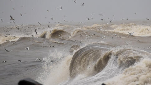Seagulls fly over the rough sea as windy and stormy weather has been battering Italy, in Fiumicino, near Rome, Tuesday, Jan. 5,…