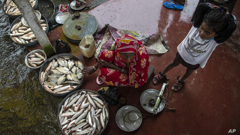 An Indian woman sells fish near the river Brahmaputra on a rainy day in Gauhati, India, Monday, June 7, 2021. (AP Photo/Anupam…