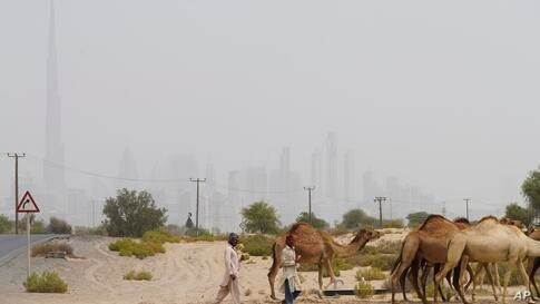 Men herd camels with the Burj Khalifa, the world's tallest building, seen in the distance amid a sandstorm in Dubai, United…