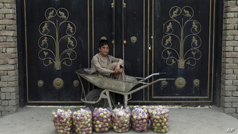 A fruit vendor waits for customers beside a street in Paghman district of Kabul, Afghanistan, Monday, July 19, 2021. (AP Photo…