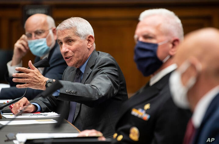 Director of the National Institute of Allergy and Infectious Diseases Dr. Anthony Fauci, second from left, testifies before a…