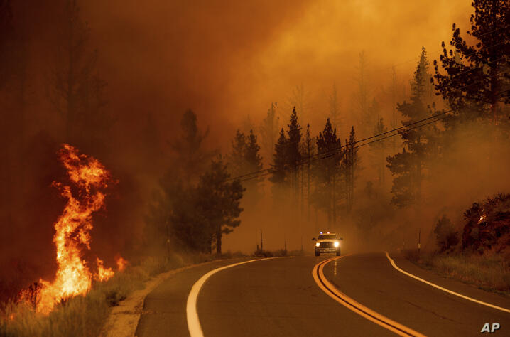 Flames lick at a roadside as the Tamarack Fire burns in the Markleeville community of Alpine County, Calif., on Saturday, July…