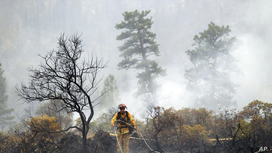 A firefighter with the Anderson Fire Protection District douses hot spots left behind by the Eiler Fire along Highway 89, Aug. 4, 2014, near Burney, Calif. Firefighters were focusing on two wildfires near each other in Northern California that have bur...