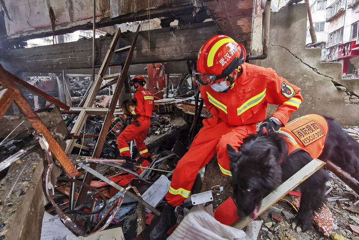 In this photo released by Xinhua News Agency, rescue workers using sniffer dogs to search for survivors in the aftermath of a…