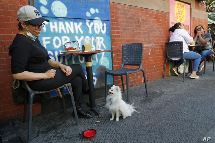 Alexa Rodiulfo gets her dog Paco's atttention at Fred's on Manhattan's Upper West Side on the first day of the phase two…