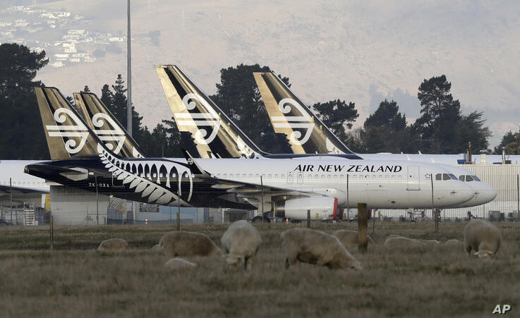 Air New Zealand planes sit parked on the tarmac as sheep graze in a nearby field at Christchurch Airport in Christchurch, New…