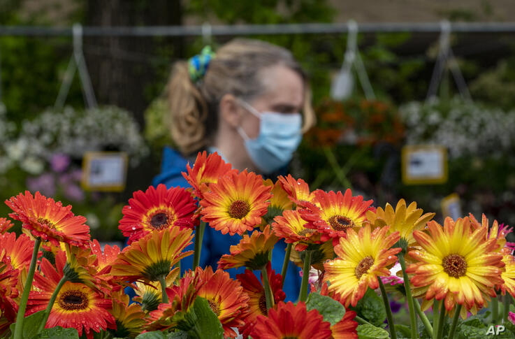 Displays of brightly-hued blooms soak up the rain as Cathleen Trail of Arlington, Va., visits an outdoor shop for colorful…