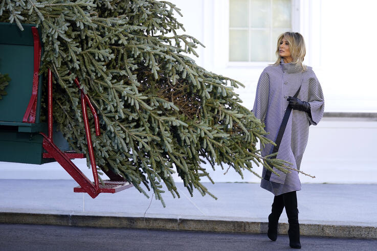First lady Melania Trump walks around the 2020 official White House Christmas tree after it arrived at the White House in…