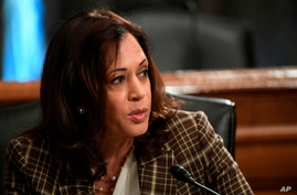 Sen. Kamala Harris, D-Calif., Department of Homeland Security Acting Secretary Chad Wolf during a Senate Homeland Security and…
