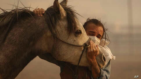 Fabio Losurdo comforts his horse, Smarty, at a ranch in Simi Valley, Calif., Wednesday, Oct. 30, 2019. A brush fire broke out just before dawn in the Simi Valley area north of Los Angeles.
