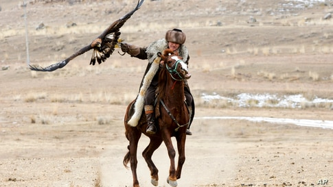 """A Kyrgyz man rides a horse holding a golden eagle for an eagle hunt during the hunting festival """"Salburun"""" in Tuura-Suu, a…"""