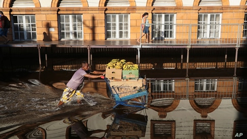 A man pushes a shopping cart loaded with bananas through a street flooded by the Negro River in downtown Manaus, Amazonas state…