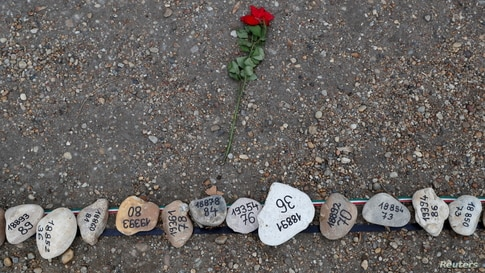 A flower lies next to the stones placed to commemorate Hungary's coronavirus disease (COVID-19) victims on Margaret Island in Budapest