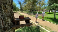 People wearing face masks walk by a squirrel-sized bench complete with nuts installed on a tree at Valley Village Park during…