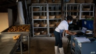 """Paola Machado, 18, member of the """"Canasta Campesina"""" association of agricultural production, checks customer orders on her…"""