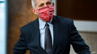 Director of the National Institute of Allergy and Infectious Diseases Dr. Anthony Fauci wears a Washington Nationals face…