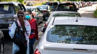 Volunteers stand among hundreds of cars to register people lining up for COVID-19 testing, in Annandale, Va., Saturday, May 23,…