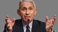 Anthony Fauci, as US National Institute of Allergy and Infectious Diseases director, testifies before a Senate Health,…