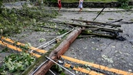 Debris from trees and power lines lie in a road brought down by high winds and rain, Tuesday, Aug. 4, 2020, in Edgewater, N.J…