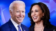 Joe Biden and Kamala Harris on texture, partial graphic