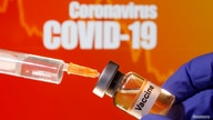 "FILE PHOTO: A small bottle labeled with a ""Vaccine"" sticker is held near a medical syringe in front of displayed ""Coronavirus COVID-19"" words in this illustration"