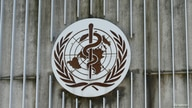 FILE PHOTO: A logo is pictured on the headquarters of the WHO in Geneva