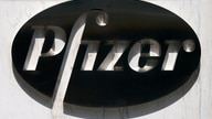 FILE PHOTO: FILE PHOTO: A sign is pictured outside Pfizer Headquarters in the Manhattan borough of New York City