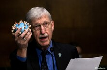 National Institutes of Health Director Francis S. Collins holds a model of SARS-CoV-2, the novel coronavirus, as he testifies…