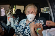 Maria Helena Alcantara gets a shot of the Sinovac COVID-19 vaccine while she sits in her car with her pets during a priority…