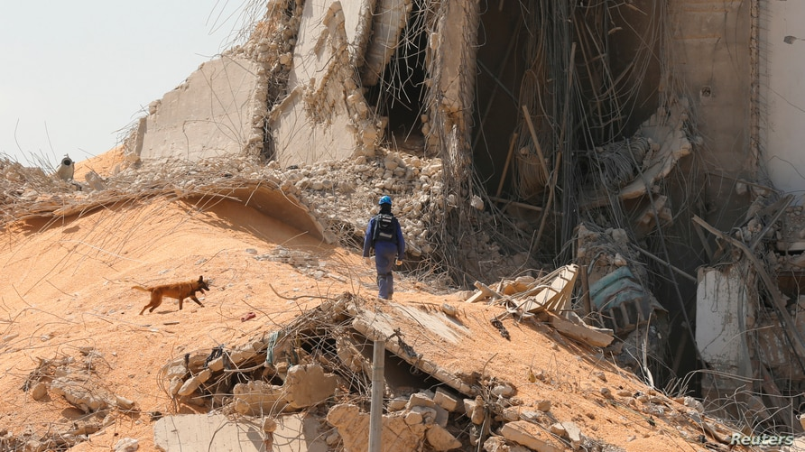 French rescue team member and a search and rescue dog walk near the damaged grain silo at the site of Tuesday's blast, at…
