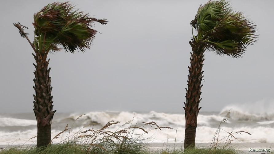 Palm trees sway in the wind as Hurricane Sally approaches in Gulf Shores, Alabama, U.S., September 15, 2020.  REUTERS/Jonathan…