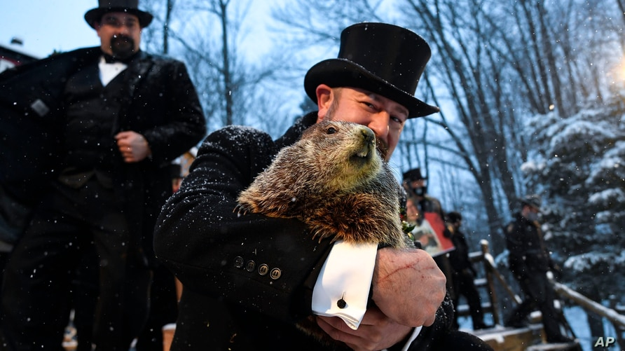 Groundhog Club handler A.J. Dereume holds Punxsutawney Phil, the weather prognosticating groundhog, during the 135th…