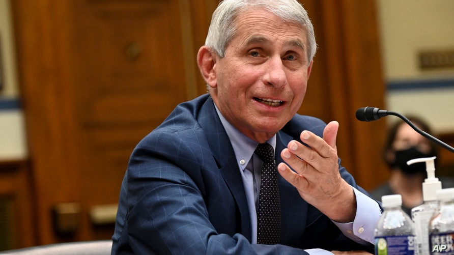 Dr. Anthony Fauci, director of the National Institute for Allergy and Infectious Diseases, testifies before a House Select…