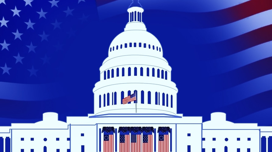 US Flags draped on west front of US Capitol for 2021 Biden Inauguration ceremonies, drawing, on texture, partial graphic