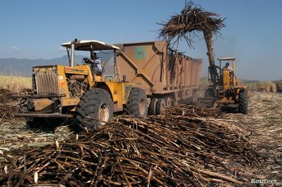 A truck is loaded with sugar cane at a plantation in Cantaranas March 23, 2006.Honduras has become the second Central American…