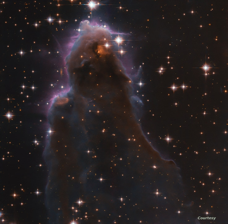 This image, taken with the NASA/ESA Hubble Space Telescope, depicts a special class of star-forming nursery known as Free…
