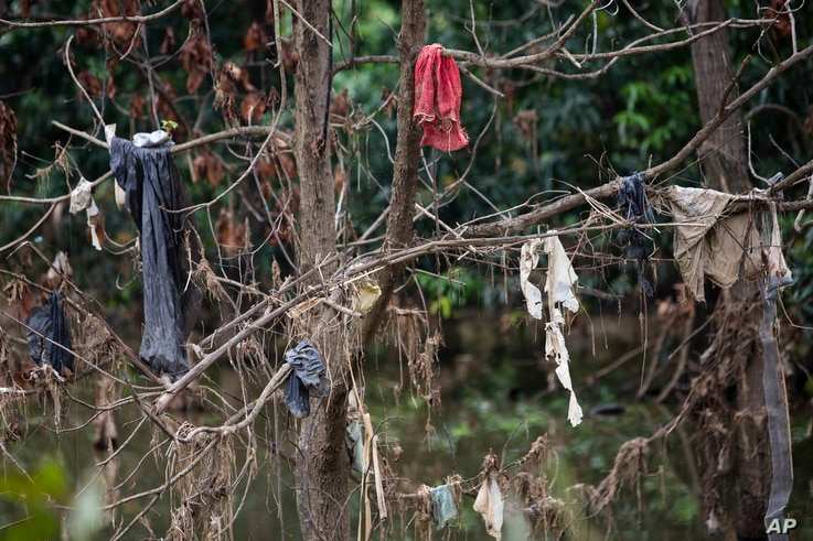 Pieces of clothing hang from a tree in the Chamelecon River after the water brought by hurricanes Eta and Iota receded little…